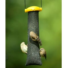 homemade finch bird feeders bird feeders birds and homemade