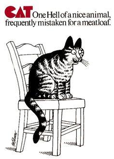 Kliban Cats                                                                                                                                                                                 More