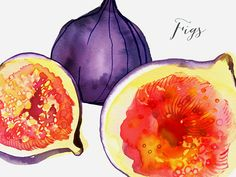 Margaret Berg Art: Figs