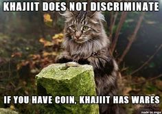 Khajiit Merchant - Meme on Imgur