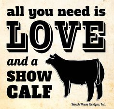 All You Need is LOVE and a Show Calf - Livestock Motivation By Ranch House Designs Livestock Judging, Showing Livestock, Showing Cattle, Cow Quotes, Animal Quotes, Farm Quotes, Show Cattle Barn, Show Cows, Show Steers