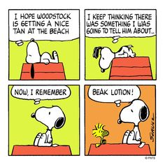 Woodstock forgets his Beak Lotion, Snoopy and the Peanut Gang. Snoopy Cartoon, Snoopy Comics, Peanuts Cartoon, Peanuts Snoopy, Cartoon Pics, Peanuts Comics, Charlie Brown Christmas, Charlie Brown And Snoopy, Snoopy Christmas