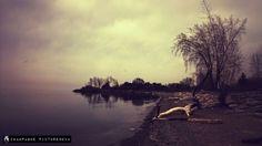 #MobilePhotography #Snapseed