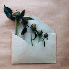 Цветы в конвертах – необыкновенный проект Анны Ремарчук:
