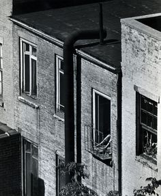 Andre Kertesz - Woman on Fire Escape, 1962 Gelatin silver print, printed c. 1962. 4 15/16 x 3 3/4 inches