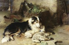 Motherless: the Shepherd's Pet Giclee Print by Walter Hunt. Collie with lamb. Welsh Sheepdog, Shetland Sheepdog, English Shepherd, The Shepherd, Rough Collie, Collie Dog, Scotch Collie, Hunting Art, Sheltie