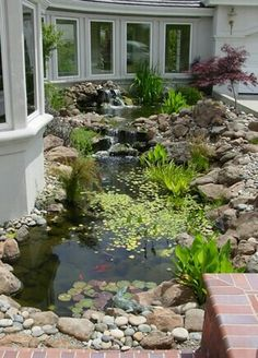 Sum1 did a phenomenal job on this manmade pond~