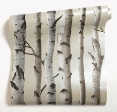 Papier peint bouleau fond beige nacr deco pinterest - Castorama colle papier peint ...