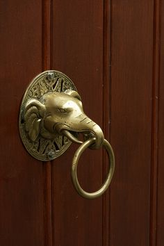Elephant Knocker