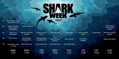 Shark Week 2017 starts July 23rd on Discovery!