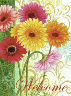 Happy Spring to all my fellow pinners, have fun no limits here ~SB~ ♥