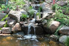 Rock Garden water fall