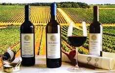 #Hanoi débouchera le 4e Traditional Quality Wine Tasting -- Vietnam+ (VietnamPlus)