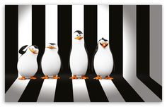 Penguins of Madagascar Movie HD desktop wallpaper : Widescreen : High Definition : Fullscreen : Mobile : Dual Monitor