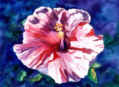 It's so much fun to show your Aloha by offering a friend a fresh picked hibiscus flower! This original watercolor will accent your Hawaiian or tropical decor. Hibiscus Flowers, Exotic Flowers, Arches Watercolor Paper, Watercolor Flowers, Seascape Paintings, Watercolor Paintings, Ginger Flower, Pineapple Art