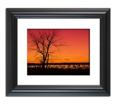 Pre-Holiday Sale! Beautify your walls with stunning landscape photography wall art before the holiday guests arrive.  *Prints are sold unframed and matted
