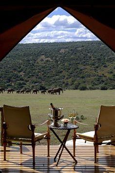 African safari vantage point