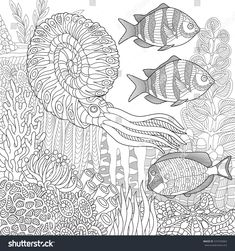 Stylized composition of tropical fish, calamari (squid), underwater seaweed, corals and starfish. Freehand sketch for adult anti stress coloring book page with doodle and zentangle elements.