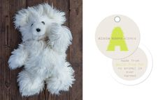 alicia adams alpaca / Tassi