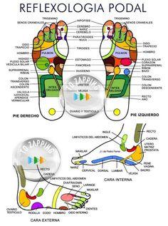 Beneficios del masaje en los pies antes de dormir.Los pies es una parte del cuerpo muy importante, pues aguanta todo el peso del cuerpo. Muchas veces no les