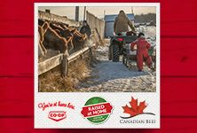 Your local Co-op is proud to support local ranchers. Meet three ranch families from Western Canada in Raised at Home, a three-part series from Co-op and Canada Beef. See how Co-op works with producers to bring quality Western Canadian beef to your table. www.raisedathome.ca/ - Saskatchewan Western Canada, Support Local, Ranch, Families, Bring It On, Meet, Table, Guest Ranch, My Family