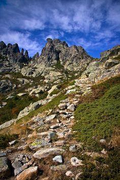 cestou na Monte D´Oro, Kosrika