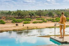 A deck overlooking the Crocodile River, a pool and a fireplace to lounge around, and herds of elephant who saunter down to the river to drink. This place is a large, comfortable base with fantastic access to the Kruger.