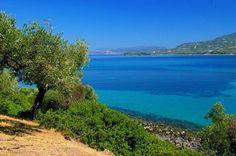 Ένας καλά κρυμμένος παράδεισος με τιρκουάζ νερά και χρυσή άμμο. Δείτε το βίντεο…