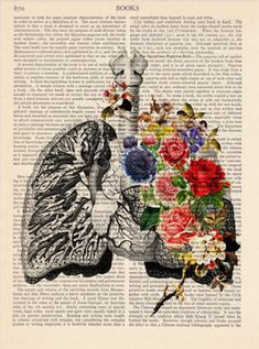 6672c4614 Anatomy print, Medical poster, Vintage Illustration Print - Lungs Flowers -  Wall decor Decorative