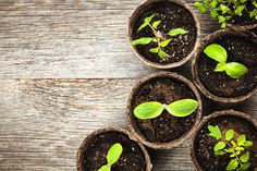 Lead nurturing is a powerful tool — and not just for your marketing and sales teams, but for your customer service team as well. While it's often marketed as a way to engage with non sales-ready leads during the sales process, the applications of lead nurturing actually extend through the entire length of the buyer...