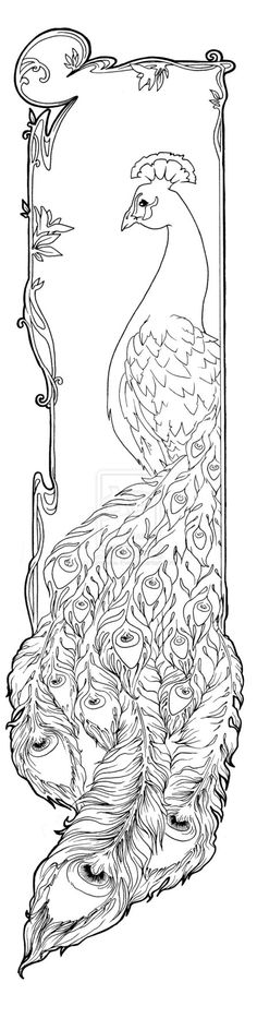 While not my style, something about Art Nouveau and the soft, curving lines has always fascinated me. Nouveau Peacock by ~Luminous-Eve on deviantART Peacock Art, Peacock Outline, Peacock Drawing, Peacock Feathers, Coloring Book Pages, Digi Stamps, Line Art, Embroidery Patterns, Embroidery Art