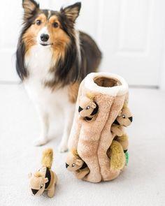 Squirrel Stump Dog Toys