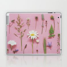Wild Flowers  by Cassia Beck  $30.00