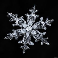 """I love the way the silver finish on this snowflake bends around the smaller """"smooth"""" side-branches, which can also be seen throughout the entire structure if you know what to look for… but you'll only enjoy it if you view large!"""