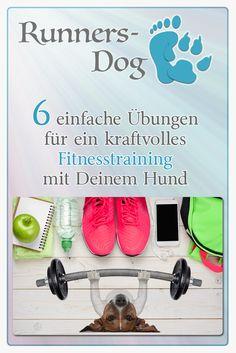 6 einfache Übungen für ein kraftvolles Fitnesstraining mit Deinem Hund