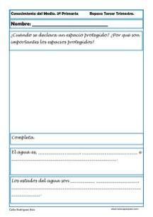 Fichas Conocimiento del medio sexto primaria 3 trimestre 04 Socialism, Knowledge, Note Cards