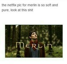 Exact opposite of the actual show Merlin Memes, Merlin Funny, Merlin Merlin, Sherlock Quotes, Sherlock John, Benedict Sherlock, Watson Sherlock, Jim Moriarty, Benedict Cumberbatch