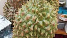 322- 5 frutas raras que encontrarás en el Sudeste Asiático!