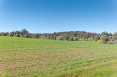 HorseProperty.com.au presents #Property #Pinterest Boards. #Horse #Properties #VIC, #WA, #QLD, #NSW and more.