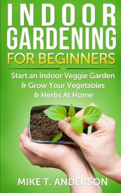 my apartment garden how to grow an indoor herb or vegetable garden gardens vegetables and