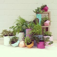 Resin Planters at Sydney Indesign with PEPO Botanical by luschia porter, via Behance