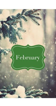 Monthly backgrounds for phone