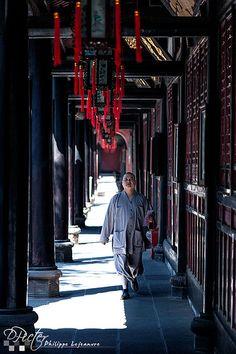 Monk at Wenshufang monastry Chengdu - Sichuan - China