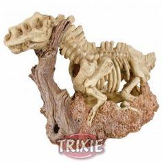 Esqueleto dinosauiro, 18x27 cm   RED SEA Kit test triator magnesio pro, #acuario #peces #agua #peceras #mascotas #animales #marinos #arrecife En www.theanimallshop.com