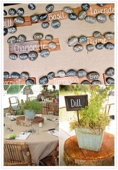 great idea for table seating: chalkboards, herb themed tables and river rocks with guests names #wedding