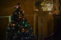 My Christmas photos *
