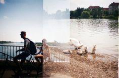 Analogue Photography by Daria Daria