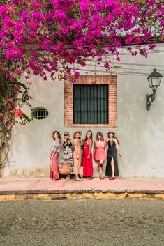 Here are 12 things to do in the Dominican Republic from Puerto Plato to Santo Domingo. There's something for everyone here - even vegans like me! Zona Colonial, Need A Vacation, City Aesthetic, Dominican Republic, Summer Travel, Central America, Caribbean, Things To Do, Wedding Photos