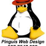 seo ireland for business pinguisweb.com