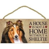 A house is not a home without a Sheltie